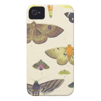 Motten und Schmetterlinge von Neuseeland iPhone 4 Cover