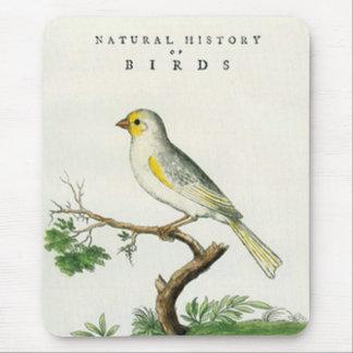 Mouse Pad - Naturwissenschaft der Vögel Mousepad