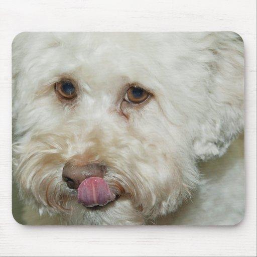 Mouse Pad White Dog Maltese Mousepad