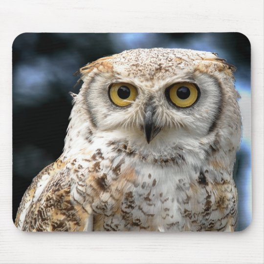 Mousepad Canadian Owl