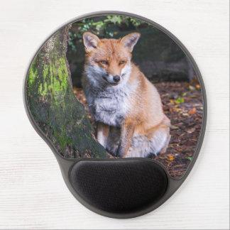 Mousepad des roten Fuchses saß durch ein Baum