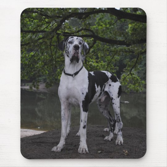 Mousepad Dogge Ares