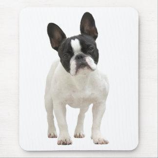 Mousepad Foto der französischen Bulldogge,