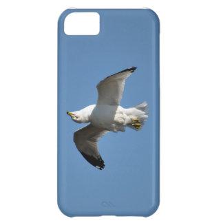 Möve, die umgedrehte lustige Tier-Fotografie iPhone 5C Hülle