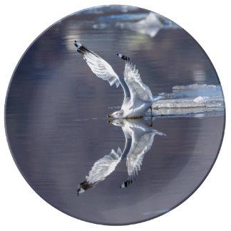 Möven-Reflexionen Porzellanteller