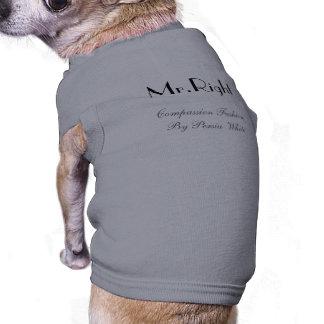 Mr.Right, Mitleid-Mode durch Persien-Weiß T-Shirt