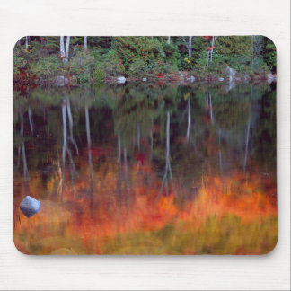 Mt. Einsame Insel| Acadia-Nationalpark, Maine Mousepad