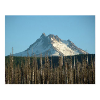 Mt. Jefferson von Olallie See, 2005 Postkarte