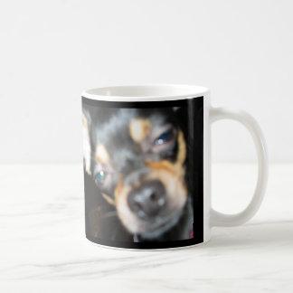Müdes Chi, wo mein KAFFEE?!?!? ist! Kaffeetasse
