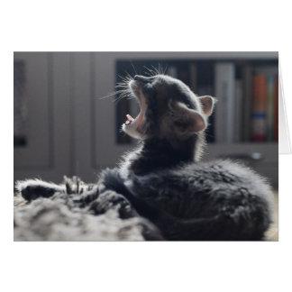 Müdes Kätzchen Karte