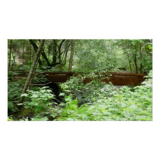 Muir Holz-Brücke I Poster