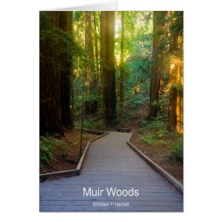 Muir Holz-Gehweg-Kalifornien-Produkte Karte