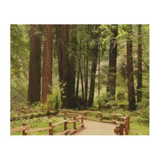 Muir Holz-Weg I Holzdruck