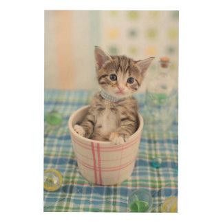 Munchkin Kätzchen mit hübschem Band Holzleinwand