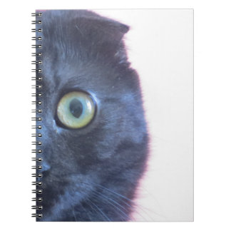 Munchkin Katzen-Notizbuch Notizblock