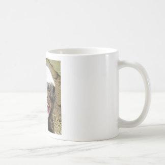 Mundbiss-Honigdachs Kaffeetasse