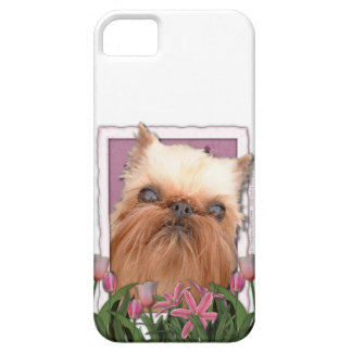 Murmeln-Umbau - Rosa Tulpen - Brüssel Griffon iPhone 5 Case