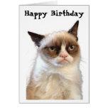 Mürrische Katzen-alles- Gute zum Geburtstagkarte