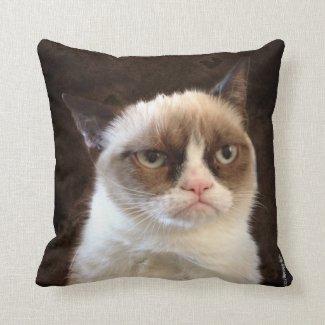 Mürrisches Katzen-Brown-Kissen Zierkissen