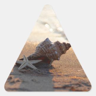 Muschel am Meer Dreieckiger Aufkleber