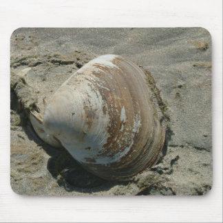 Muschel auf dem Strand Mauspads