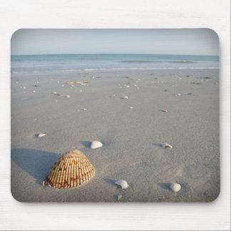 Muschel-Strand 2 Mousepad