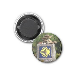 Muschel-Weisen-Kennzeichen-Magnet Runder Magnet 3,2 Cm
