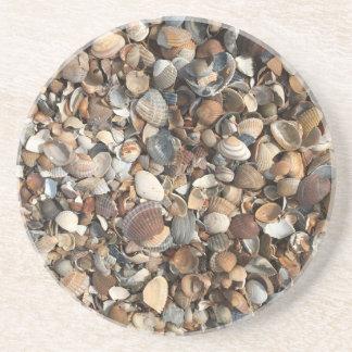 Muscheln Sandstein Untersetzer