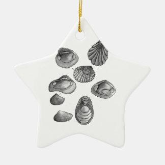 Muschelskizze Keramik Ornament