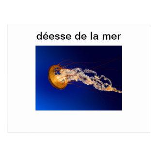muse de la Mer Postkarte