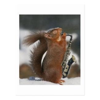 Musikalische Eichhörnchen-Postkarte Postkarten