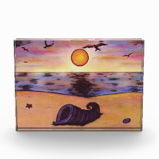 mussle auf einem Strand während Sonnenuntergang Auszeichnung