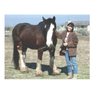 Mustang-Geist Postkarte