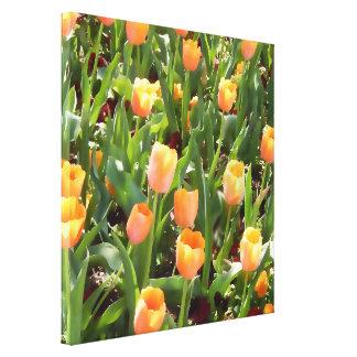 Mutige orange Tulpe-Feld-Malerei Leinwand Druck