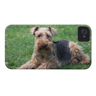 Mutiger Kasten Waliser-Terrierhundedes niedlichen iPhone 4 Case-Mate Hüllen