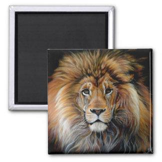 Mutiger Löwe-Magnet Quadratischer Magnet