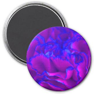Mutiges Fuschia rosa und blaue Gartennelken-Blume Runder Magnet 7,6 Cm