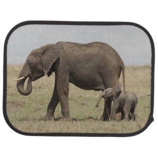 Mutter des afrikanischen Elefanten mit dem Automatte