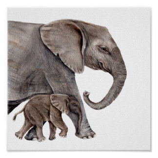 Mutter-Elefant mit Baby-Elefanten Poster