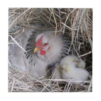 Mutter-Henne mit neuen Küken Keramikfliese