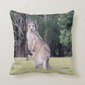 Mutter-Känguru mit Baby Joey in ihrem Beutel Kissen