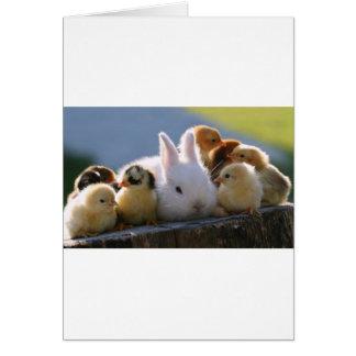 Mutter-Kaninchen adoptiert einige Küken Karte