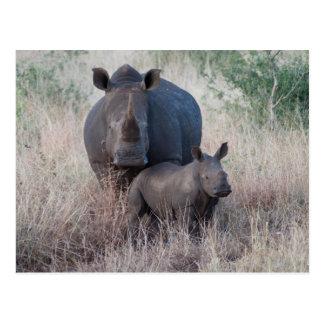 Mutter-Liebe - Rhino-Art-Postkarte Postkarte