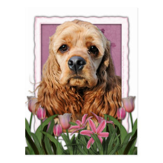 Mutter-Tag - rosa Tulpen - Cocker spaniel Postkarten