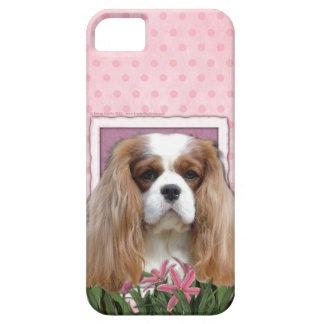 Mutter-Tag - rosa Tulpen - Kavalier - Blenheim iPhone 5 Etui