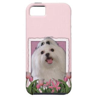 Mutter-Tag - rosa Tulpen - maltesisch iPhone 5 Case