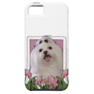 Mutter-Tag - rosa Tulpen - maltesisch iPhone 5 Etui