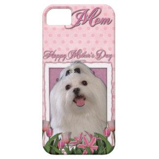 Mutter-Tag - rosa Tulpen - maltesisch iPhone 5 Hülle