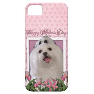 Mutter-Tag - rosa Tulpen - maltesisch iPhone 5 Hüllen