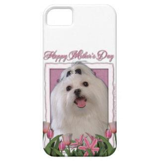 Mutter-Tag - rosa Tulpen - maltesisch iPhone 5 Schutzhüllen